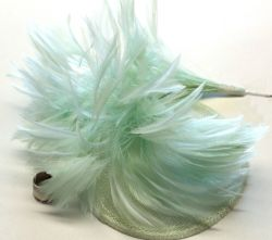 Mint Green Stripped Hackle Feather Mount